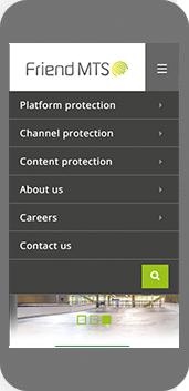 FriendMTS website on mobile screenshot